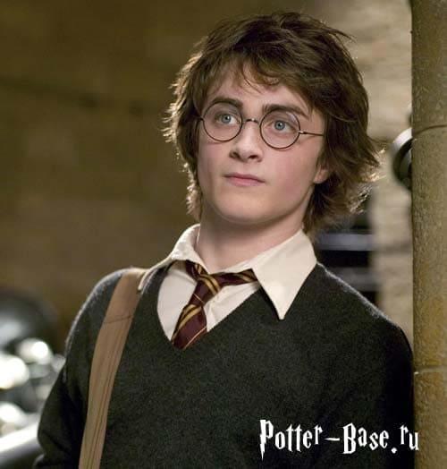 Гарри поттер анализ персонажа где дочь эвелины бледанс